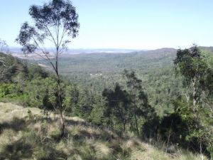 Our View from  Pine Lookout, Bunya Mountain