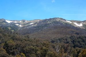 In the snow in the Snowy Mountains