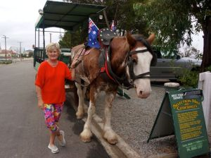 Dearne before our buggy ride at Tumby