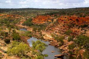 Murchison River Gorge from Hawkes Head in the Kalbarri National Park