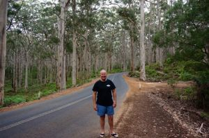 The captain wandering around the Karri Forest - a stunning environment