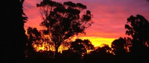 A stunning smoke assisted sunset from our parkup at the Tatura Country and Golf Club