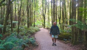 Rod strolling through the rainforest at Nelson Falls - a peaceful environment